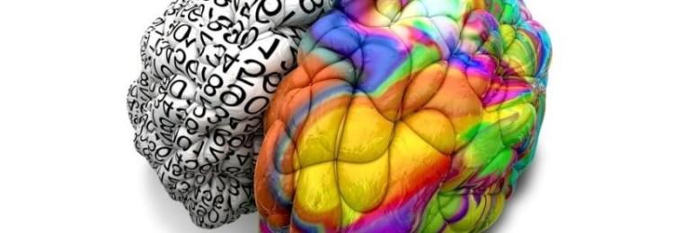 Тест: Какое полушарие мозга у вас доминирует