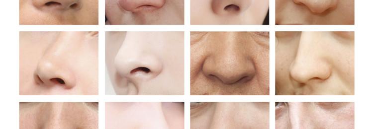 Тест: Мы угадаем, какой формы ваш нос